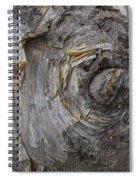 Birch Tree Bark No.0859 Spiral Notebook