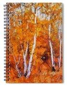 Birch Trees In Autumn Spiral Notebook