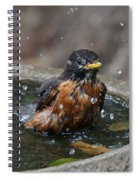 Bird Bath Fun Time Spiral Notebook
