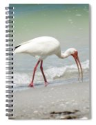 Bird Breakfast Spiral Notebook