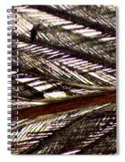 Bird Feather Spiral Notebook