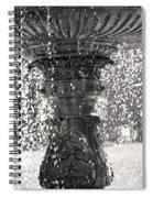 Bird Fountain Of Tears Spiral Notebook
