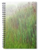 Bird House In Quogue Wildlife Preserve Spiral Notebook