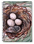 Bird Nest And A Feather Spiral Notebook