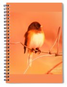 Bird On A Wire Spiral Notebook