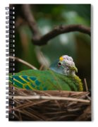 Bird On Nest Spiral Notebook
