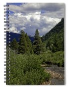 Bird Over Vail 1 Spiral Notebook