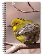 Bird - Pine Warbler - Detail Spiral Notebook