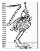 Bird Skeleton Spiral Notebook