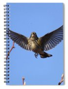 Bird Vs Bug Spiral Notebook