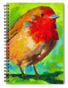 Birdie Bird - Robin Spiral Notebook