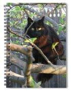 Birding  0052 Spiral Notebook
