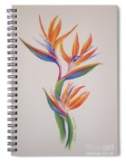 Birds Of Paradise I Spiral Notebook