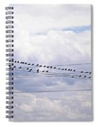 Birds On A Wire Pushed Spiral Notebook