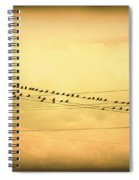 Birds On A Wire Yellow Orange Spiral Notebook