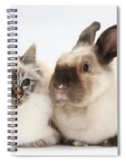 Birman Cat And Colorpoint Rabbit Spiral Notebook