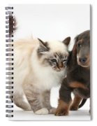 Birman Cat And Dachshund Puppy Spiral Notebook