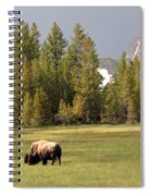 Bison In Yellowstone Spiral Notebook