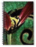 Bitten Spiral Notebook
