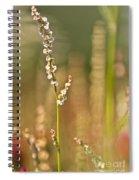 Bitter Memories Spiral Notebook