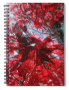 Black And Red Crescendo Spiral Notebook