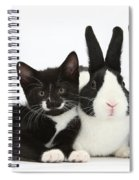 Black And Tuxedo Kittens With Dutch Spiral Notebook