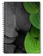 Black And White And Green Leaves Spiral Notebook