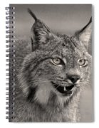 Black And White Lynx Spiral Notebook