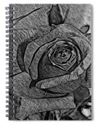 Black And White Rose Sketch Spiral Notebook