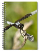 Black And White Widow Skimmer Dragonfly Spiral Notebook