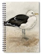 Black Backed Gull  Spiral Notebook