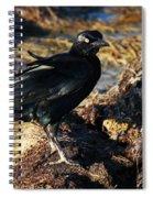 Black Bird With Yellow Eyes Spiral Notebook