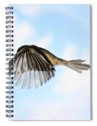 Black-capped Chickadee In Flight Spiral Notebook