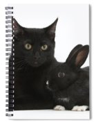 Black Cat And Rabbit Spiral Notebook