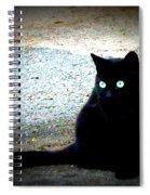 Black Cat Beauty Spiral Notebook