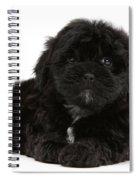 Black Cockerpoo Puppy Spiral Notebook