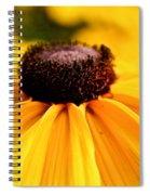 Black Eyed Susan Summer Spiral Notebook