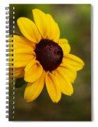 Black Eyed Susan Spiral Notebook