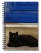 Black Greek Cat Spiral Notebook