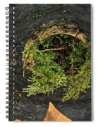 Black Hole Life Spiral Notebook