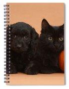 Black Kitten & Puppy With Pumpkins Spiral Notebook