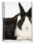 Black Kitten Dutch Rabbit Spiral Notebook