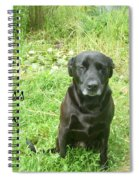 Black Lab Miss You Spiral Notebook