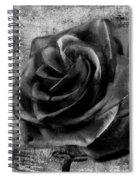 Black Rose Eternal  Bw Spiral Notebook