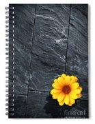 Black Schist Flower Spiral Notebook
