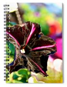 Black Spider Petunia Spiral Notebook