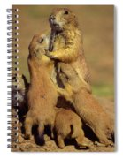Black-tailed Prairie Dogs Spiral Notebook