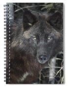 Black Timber Wolf Spiral Notebook