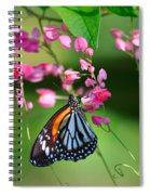 Black Veined Tiger Butterfly Spiral Notebook
