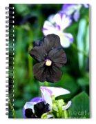 Black Violet Spiral Notebook